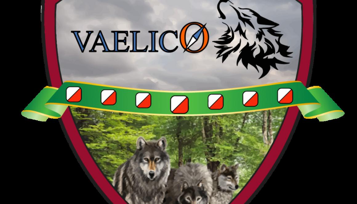 Escudo Vaelico_web